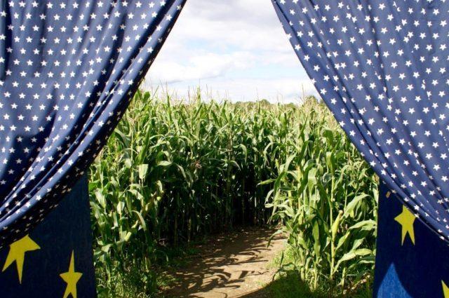 Labyrinthe de maïs, ferme, jeux et labyrinthes permanents