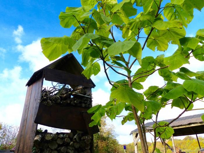 Le Labyrinthe de Pont-aven et sa ferme parc de loisirs nature finistere le potager atelier pédagogique la cabane à insectes